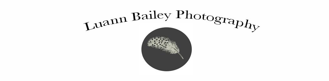 LuannBailey logo